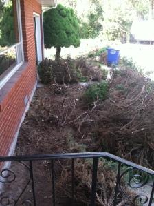 yard work 1